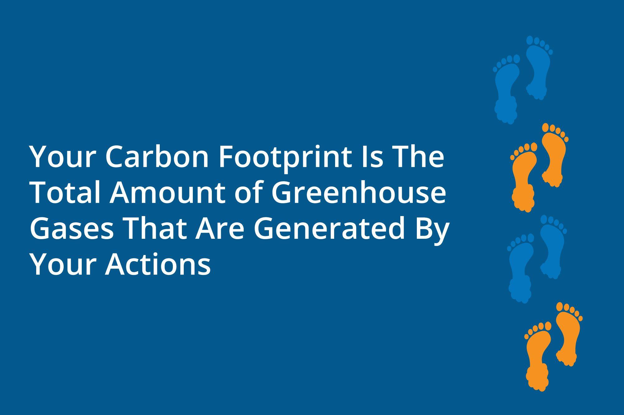 Infographic regarding carbon footprints